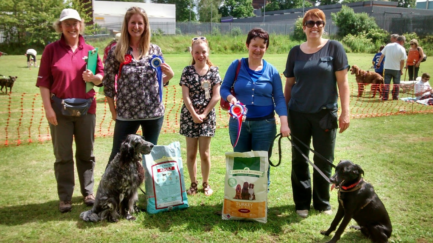 Dog Trainers Association Uk