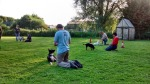 dog classes in Grantham